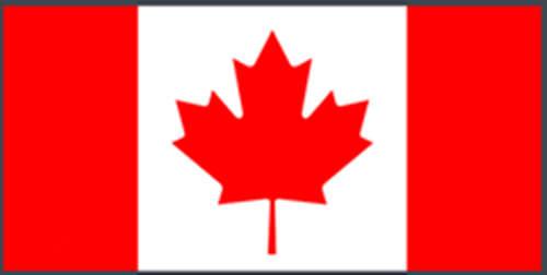 【国外驾照pinnacle平博平博娱乐官网】加拿大驾照pinnacle平博平博娱乐官网专业有资质pinnacle平博公司