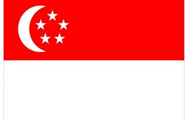 【境外驾照换领中国驾照】新加坡驾照pinnacle平博平博娱乐官网-泉州有资质的pinnacle平博公司交警大队车管所认可的中国pinnacle平博协会会员